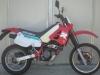 R600 Filippo